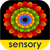 Sensory Coloco - Symmetry Painting and Visual Effects